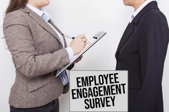 Engagement_Survey_Bacciardi